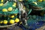 Thumbnail fishing net, Cala Figuera, Majorca, Spain