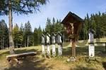 Thumbnail totenbretter Brennes - Bavarian Forest Germany