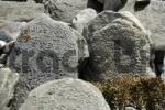 Thumbnail Old Tibetan script on rocks Kyang Nar-Phu Annapurna Region Nepal