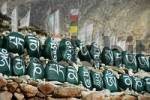 Thumbnail Tibetan script on green painted stones set in a row in front of prayer flags at monastery Tashi Gompa Phu Nar-Phu Annapurna Region Nepal