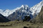 Thumbnail Walls and juniper tree in front of the mountain massives of Pisang Peak and Annapurna II Kyang Nar-Phu Annapurna Region Nepal