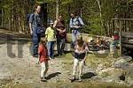 Thumbnail Family with children on an excursion in the nature
