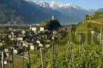 Thumbnail In the vineyards of Saillon Valais Switzerland