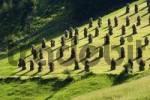Thumbnail Sellraintal Tyrol Austria
