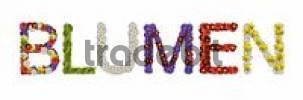 Thumbnail Schriftzug Blumen, aus Blüten zusammengesetzt