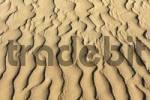 Thumbnail ripple, sand dunes, Maspalomas, Gran Canaria, Spain