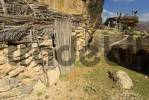 Thumbnail historic cliff dwelling on Socotra island, UNESCO-World Heritage Site, Yemen