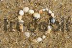 Thumbnail heart made of shells in the sand