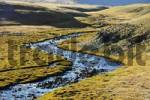 Thumbnail Blue shimmering river winds through the green steppe Kharkhiraa Mongolian Altai near Ulaangom Uvs Aymag Mongolia