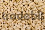 Thumbnail cashew nuts