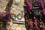 Thumbnail bougainvillea at a house front in Sirmione, Lake Garda, Lombardy, Italy