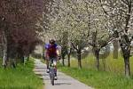Thumbnail bicycle route along the Triesting valley near the village of Pottenstein Lower Austria