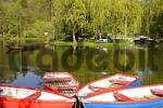 Thumbnail rowing boats on pond in park in health resort Reichenau Lower Austria Austria
