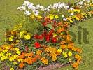 Thumbnail Germany Bavaria Upper Bavaria Linderhof Park grounds Flowers bed with yellow red and white Flowers green Grass