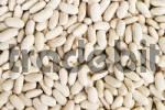 Thumbnail White dried beans