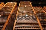 Thumbnail La Rioja Haro Bodega Muga wine cellar Spain