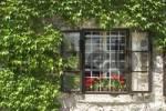 Thumbnail Bled castle - slovenia