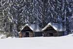 Thumbnail log cabins deeply covered with snow near Krungl Styria Austria