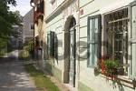 Thumbnail House in Pilstanj in culture landscape Kozjansko - Slovenia