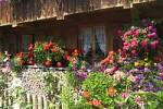 Thumbnail old wooden house with flowers Bernried Starnberger See Upper Bavaria Germany