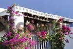 Thumbnail Es Trui de Can Andeu - typical 17th century house in Sant Carles de Paralta on Ibiza