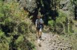 Thumbnail PR Woman with little dog hiking at Caldera de Taburiente, La Palma, Canary Islands, Spain