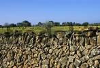 Thumbnail Majorca near Campos