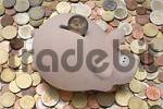 Thumbnail Piggy bank with euro coins