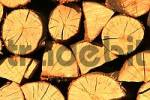 Thumbnail Stacking beech fire wood