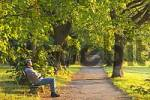 Thumbnail man enjoys the morning sun on a park bench in Perchtoldsdorf Lower Austria