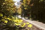 Thumbnail bikers forest path - Upper Bavaria - Germany