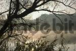 Thumbnail river Danube in the early morning mist near Windorf district of Passau Lwoer Bavaria Germany