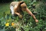 Thumbnail women works in her vegtable garden