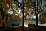 Thumbnail park bench with visitor in autumn, Kochelsee, Upper Bavaria, Bavaria, Germany