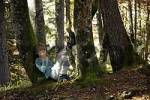 Thumbnail little boy sitting between two tree trunks