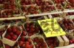 Thumbnail Strawberries at market stand