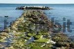 Thumbnail Mole at the port entrance, Villajoyosa, Vila Joiosa, Costa Blanca, Spain