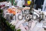 Thumbnail Fish on market