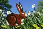 Thumbnail Easter bunny, decoration on a flower meadow
