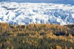 Thumbnail Matanuska Glacier, fall colors, Chugach Mountains, Alaska, USA