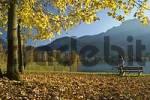 Thumbnail woman with bicycle at Lake Kochel, Bavaria, Germany