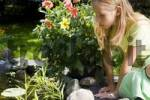 Thumbnail Blond girl looking into a garden pond with interest