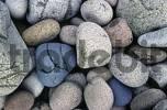 Thumbnail Coloured pebbles at Pointe de Diben, Brittany, France