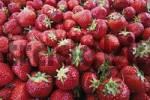 Thumbnail Strawberries, full frame shot