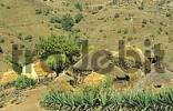 Thumbnail african village Ethiopia