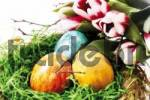 Thumbnail Easter nest with colourful eggs and tulips