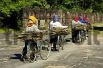 Thumbnail Women wearing colourful kerchiefs pushing bicycles with fire wood Preah Khan Angkor Siem Reap Cambodia