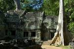 Thumbnail Old Khmer temple Ta Prohm grown in the jungle with big trees Angkor Siem Reap Cambodia