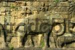 Thumbnail Relief of an elephant Terrace of Elephants Angkor Siem Reap Cambodia