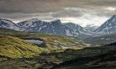 Thumbnail Dovrefjell-Sunndalsfjella National Park, Norway, Scandinavia, Europe
